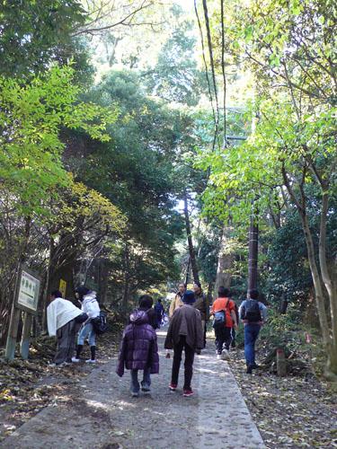 Takaosan08111