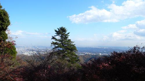 Takaosan08113