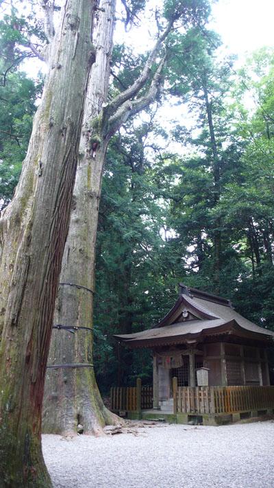 Takachihojinjya3