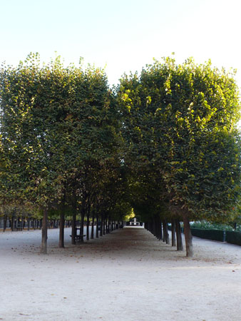 Paris110906