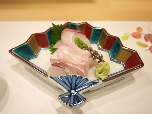 Hoshino121007