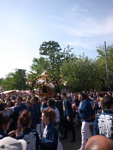 Sanjya130509