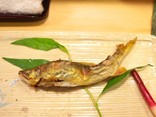 Hoshino130615