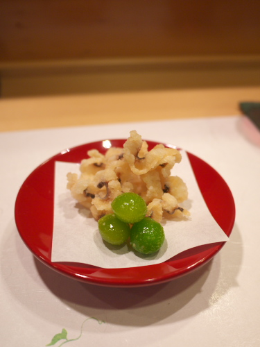 Hoshino130807