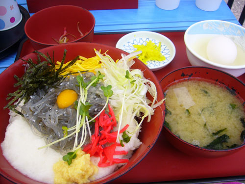 Yuuki0705276
